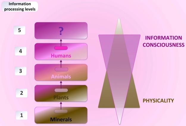 Rysunek 260: Pięć poziomów umiejętności przetwarzania informacji (© Sott. net)